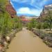 Virgin River Trail
