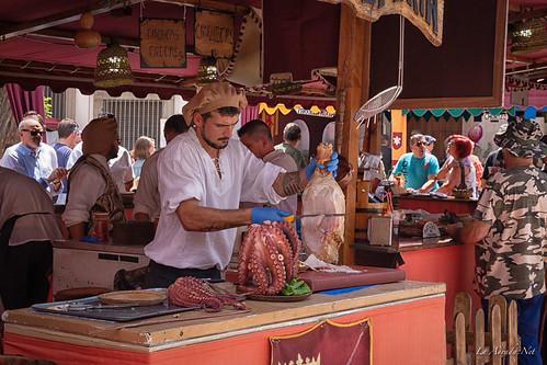 "XVIII Mercado Medieval de La Adrada • <a style=""font-size:0.8em;"" href=""http://www.flickr.com/photos/133275046@N07/47786153951/"" target=""_blank"">View on Flickr</a>"
