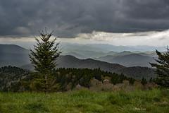 Dark Cloud Over Head (mevans4272) Tags: grass trees clouds dark nc parkway overlook cowee mountains