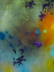 The Characters of Nature (Steve Taylor (Photography)) Tags: chinesecharacters bubbles butterfly flower art painting picture colourful asia singapore texture summer artsciencemuseum projection screen