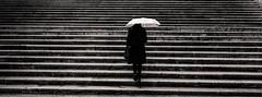 Untitled (LoKee Photo) Tags: lokee roma italy stairs rain umbrella woman stripes lines black white monochrome street city urban fujifilm