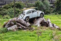 Stacked (Johann (Still Me!)) Tags: beetle logs abandoned vehicle rust rusty flickrlounge weeklytheme weeklytheme19stacked johanndejager ef70300mmf456isusm canoneos5dmarkiv