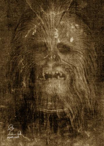 Chewie Shroud