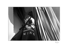 Wing (radspix) Tags: yashica 230af kyocera 2885mm f3545 ilford fp4 plus pmk pyro