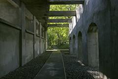 IMG_4194 (ickeliv) Tags: naturpark südgelände berlin germany