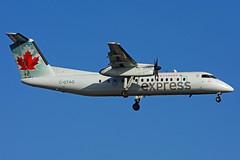 C-GTAG (Air Canada express - JAZZ) (Steelhead 2010) Tags: aircanada aircanadaexpress dehavillandcanada dhc8 dhc8300 dash8 yyz cgtag creg