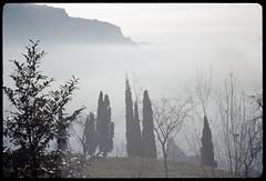 Rancio, località Paradiso, autunno 1970 (Alberto Cameroni) Tags: viaparadiso magnodeno nebbia cipressi diapositiva negativo pellicola agfa nikkormat lecco analogico rancio