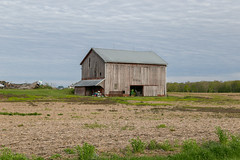 Back Barn — Bridgewater Township, Williams County, Ohio (Pythaglio) Tags: barn building structure historic back montpelier ohio unitedstatesofamerica bridgewatertownship williamscounty bridgewatercenter clouds trees field scrubby raisedbasement outbuilding agriculture pentroof bank threebay