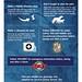 Hurricane Preparedness Tips (1)