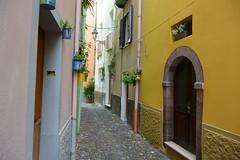alley (Hayashina) Tags: sardegna alghero alley door colours town