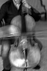 Jameson D.Platte (Alina Mayboroda) Tags: cello cellist music mayborodaalina art fubiz nyc newyork positivethinkiпg ifyoulive etude thinkverylittle people senses classicalmusic pr0jectbnw artbnw bnw bnwlegit bnwdemand bnwgreatshots newyorkcity digitalart milano newyorker