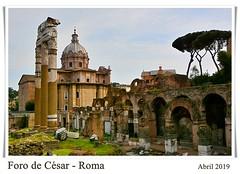 DSC_7013_M_M (Jos127) Tags: roma coliseo arco tito cesar piedras vaticano italia museo bustos fontana caracalla foro palatino