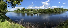 2019 05 11 - Low Green pano (LesHutchinson) Tags: irvine scotland panorama iphone8 lowgreen spirng trees river clouds reflection flickrfriday