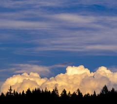Cloud Mountain (CoolMcFlash) Tags: landscape cloud silhouette forest sky weather nature fujifilm xt2 cloudy landschaft wolken cloudscape kontur tree wald bäume himmel wetter natur bewölkt fotografie photography xf18135mmf3556r lm ois wr austria österreich