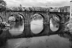 Pont Vieux (albireo 2006) Tags: bridge reflection pontvieux caracssonne occitanie france aude riveraude blackwhitephotos blackandwhite blackandwhitephotos blackwhite bw bn