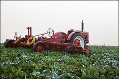 Harvest - Kodak Ultramax 400 (magnus.joensson) Tags: sweden swedish harvest fog haze söderslätt autumn september chinon 1000s supertakumar 55mm kodak ultramax 400 c41 sunrise m42