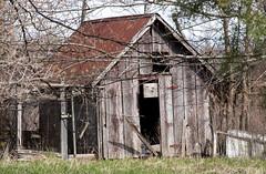 Abandoned Shed (ksblack99) Tags: abandonedbuilding