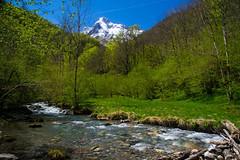 Vallée d'Estours (Ariège) (PierreG_09) Tags: ariège pyrénées pirineos couserans occitanie midipyrénées coursdeau estours ruisseau rivière torrent montvalier