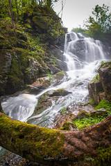 Gorges de Narvau (ludivine.dias) Tags: cascade water waterfall nièvre bourgogne france lormes nature forest foret eau ruisseau rivière narvau