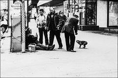 DRA110610_053A (dmitryzhkov) Tags: urban outdoor life human social public stranger photojournalism candid street dmitryryzhkov moscow russia streetphotography people bw blackandwhite monochrome analog film epson scan animal pet dog dogs animalsinthecity