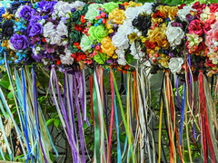 Floral Head Piece with Ribbons (clarkcg photography) Tags: fullofcolour color colorful floral headpiece castle maypole dance crazytuesday