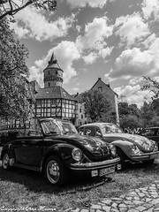 Schloss Oelber am weißen Wege 12052019 B&W 06 (U. Heinze) Tags: schloss oelber niedersachsen deutschland norddeutschland germany olympus penf 1240mm blackwhite bw schwarzweis