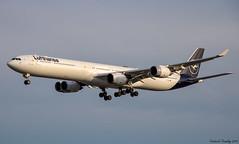 Lufthansa / Airbus A340-642 / D-AIHI / YUL (tremblayfrederick98) Tags: a340600 airbus a340 airbusa340 340600