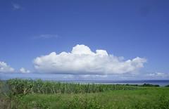 001_西表島 (VesperTokyo) Tags: 西表島 いりおもてじま 沖縄県 八重山郡竹富町 八重山列島 日本 空 雲 島 iriomoteisland okinawa japan cloud sky 海 sea