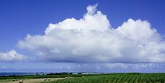 026_西表島 (VesperTokyo) Tags: 西表島 いりおもてじま 沖縄県 八重山郡竹富町 八重山列島 日本 空 雲 島 iriomoteisland okinawa japan cloud sky 海 sea