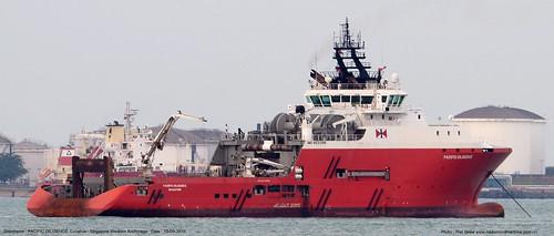 pacific diligence@piet sinke 10-05-2019