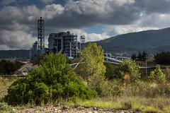 Biomassa Cornia-90
