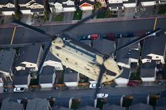 U.S. Army CH-47F 12-08878 (Josh Kaiser) Tags: 1208878 ch47 ch47f ftlewis grayaaf jblm usarmy
