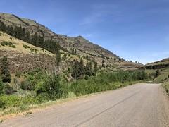 IMG_2091 (Doug Goodenough) Tags: bicycle bike camping pedals spokes ebike bulls evo estream 29 imnaha river oregon spring rpod canyon mountains zumwalt prarie wallowa wallowas drg531 drg53119 drg53119imnaha gravel grinding cycle dirt