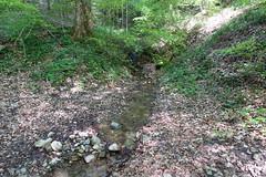 Châtillon-sur-Cluses @ Hike to Mont Orchez (*_*) Tags: 2019 may afternoon spring printemps cluses europe france hautesavoie 74 savoie hiking mountain montagne walk marche randonnee nature