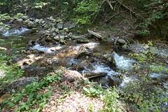 Ruisseau de l'Englenaz @ Hike to Mont Orchez (*_*) Tags: cluses printemps spring afternoon 2019 may europe france hautesavoie 74 savoie hiking mountain montagne walk marche randonnee nature