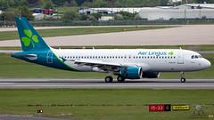 EI-DVL A320 EIN