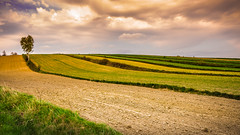Wuthering Hills (Andrzej Kocot) Tags: andrzejkocot adventure creative clouds countryside photography poland polska light landscape landscapes olympus