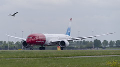 LN-LNT Boeing 787-9 Dreamliner (Disktoaster) Tags: eham ams schiphol airport flugzeug aircraft palnespotting aviation plane spotting spotter airplane pentaxk1