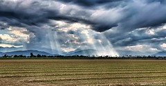 Even during a storm there is always a ray of sunshine ..  (Fossano, Piedmont, Italy). (Federico Fulcheri Photo) Tags: federicofulcheriphoto©️ italy piedmont fossano sunshine sky storm clouds agriculture rural horizon nature landscape nopeople outdoors snapseed iphonexsmax iphone apple