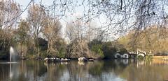Duck Island Cottage in St James's Park, London (Sandra L Ekins) Tags: duck island cottage stjamesspark london fountain water lake
