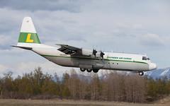 L-100 | N403LC | ANC | 20150510 (Wally.H) Tags: lockheed l100 hercules c130 n403lc lyndenaircargo anc panc anchorage airport