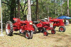 McCormick Farmall tractors 2921 (Tangled Bank) Tags: visiting stephen foster folk culture center state park white springs florida old classic heritage vintage cultural history historical museum rural south southern american dixie farm farming agriculture agricultural equipment mccormick farmall tractors 2921