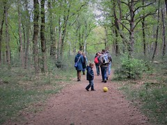 Birthday walk (Elisa1880) Tags: hollandsche rading de lage vuursche utrecht nederland netherlands birthday walk verjaardagswandeling