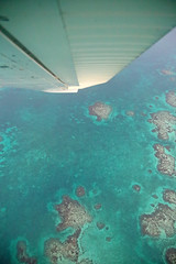 Bank Right (peterkelly) Tags: digital canon 6d northamerica centralamerica gadventures mayandiscovery belize cayecaulker airplane plane wing banking bank blue reef caribbeansea aerialphotography aerialphotos