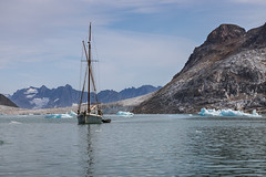 Behind Kap Deichmann.......... no anchorage here. (apcmitch) Tags: icebergs ice glaciers sailing sea dolphin mountains moraine greenland eastgreenland2014