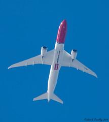 (tremblayfrederick98) Tags: norwegian 787dreamliner 78 787 boeing7879 boeing787 sfo