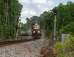 Southern is Still in the South (ajketh) Tags: ns norfolk southern emd gp382 5237 p75 freight train railroad high hood sou local country south approach signal summit sc carolina sanders notch 8