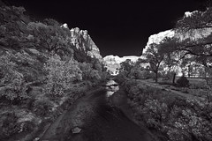 Virgin River (kyle.tucker95) Tags: zionnationalpark utah nationalpark nationalparkservice outdoor landscape arid trail virginriver water river bw blackwhite blackandwhite canon eos5dmarkiv
