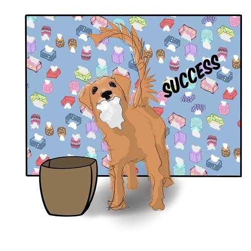 My Dog Loves Kleenex