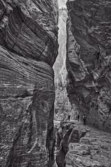 Echo Canyon (kyle.tucker95) Tags: zionnationalpark utah nationalpark nationalparkservice outdoor landscape arid trail observationpointtrail echocanyon bw blackwhite blackandwhite canon eos5dmarkiv